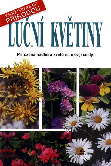 Luční květiny - Velký průvodce přírodou