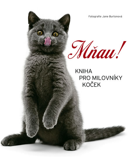 Mňau! - Kniha pro milovníky koček