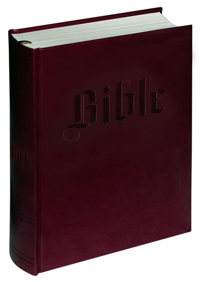 Bible (malá)