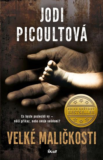 Jodi Picoultová - Velké maličkosti