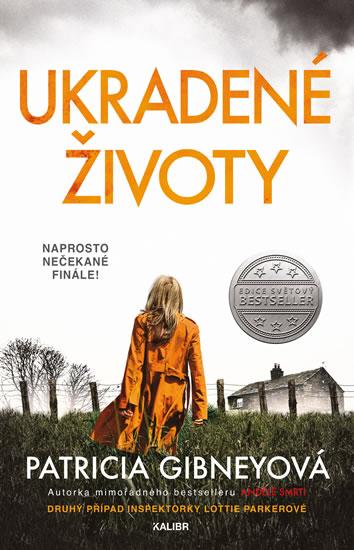 Patricia Gibneyová - Ukradené životy