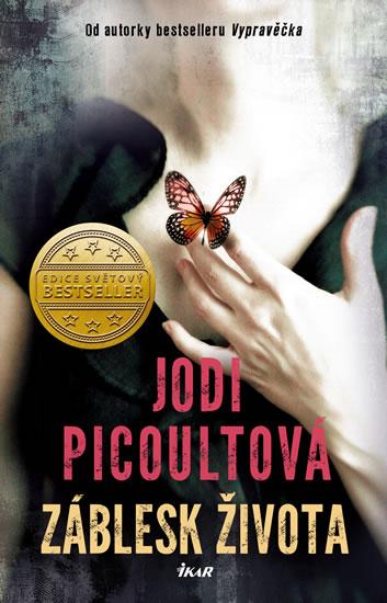Jodi Picoultová - Záblesk života