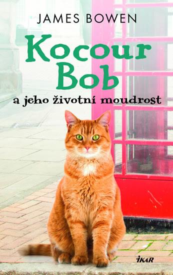 Kocour Bob a jeho životní moudrost