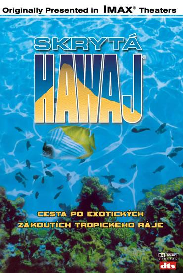havajské slovo pro připojení