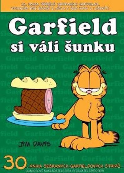 GARFIELD 30 SI VÁLÍ ŠUNKU