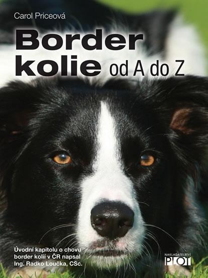 BORDER KOLIE - PLOT