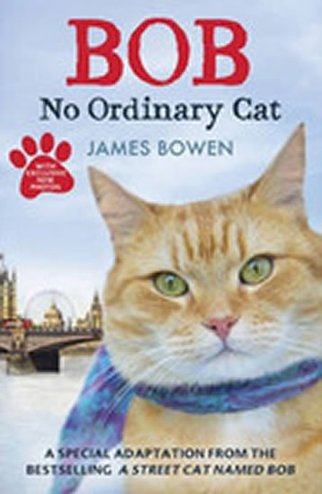 Bob : No ordinary cat