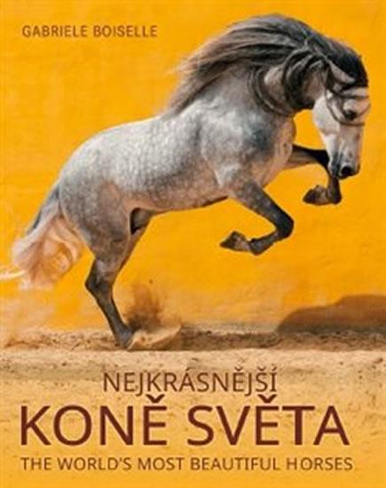 Nejkrásnější koně světa