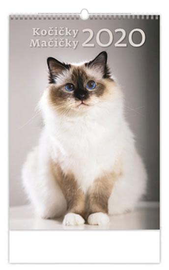 Průměrná kočka je vysoká v kohoutku asi 30cm a na délku měří kolem 80cm.