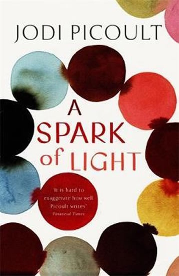 Spark of Light : from the author everyone should be reading