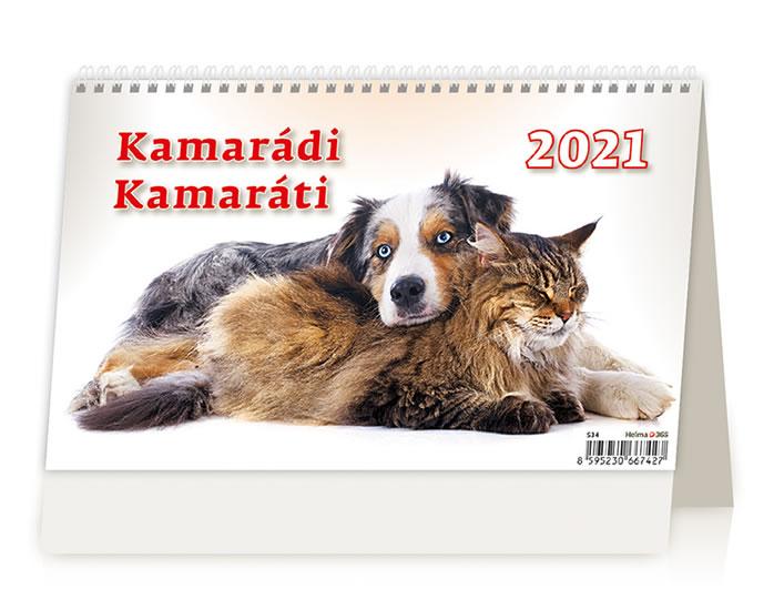 2021 KAMARÁDI STOLNÍ