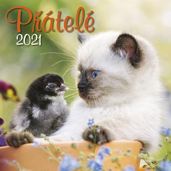 KALENDÁŘ 2021 PŘÁTELÉ