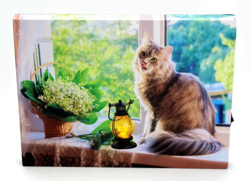 Obrázek se světýlky Kočka na okně