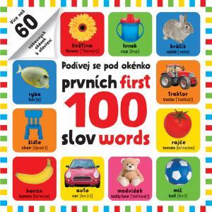 PRVNÍCH 100 SLOV / FIRST 100 WORDS - POD