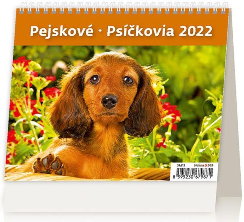 2022 PEJSKOVÉ STOLNÍ MINIMAX